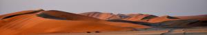 dunes_1140x200